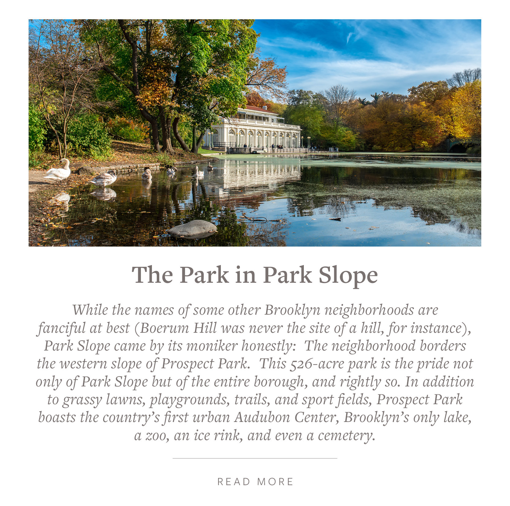 culturally-inclined-park-slope-7
